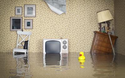 Premières choses à faire après une inondation